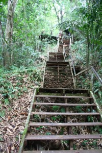 The steps up the Singai